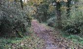Trail Walk LE SEL-DE-BRETAGNE - 27.11.2017 - PETIT FOUGERAY Nord à LE SEL Sud - Photo 8