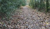 Trail Walk LE SEL-DE-BRETAGNE - 27.11.2017 - PETIT FOUGERAY Nord à LE SEL Sud - Photo 27