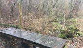 Randonnée Marche Ménières - forêt d Granges - Photo 1
