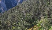 Randonnée Marche BELVIANES-ET-CAVIRAC - le trou du Curé 3km 195m - Photo 3