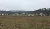 Randonnée Marche Ménières - Forêt de Verdière - Photo 1