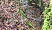 Randonnée Marche SAINT-AUBIN-DU-CORMIER - 27/12/2017 - ST AUBIN DU CORMIER d'est en ouest.Virtuel - Photo 14