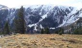 Randonnée Raquettes à neige LE VALTIN - Les 3 fours - Photo 5