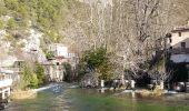 Randonnée Marche SAUMANE-DE-VAUCLUSE - Fontaine de Vaucluse  Canal - Photo 1