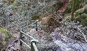 Randonnée Marche PLANCHER-LES-MINES - Rando-plancher - Belfahy - Photo 5