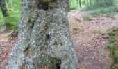 Randonnée Marche nordique Unknown - Marche Nordique 38 Bézu-la-Forêt - Photo 1