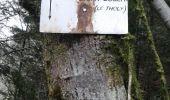 Trail Walk SAINT-AME - entre Duché de Lorraine et Abbaye du St Mont - Photo 14