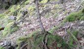 Trail Walk SAINT-AME - entre Duché de Lorraine et Abbaye du St Mont - Photo 12