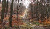 Randonnée Marche SAINT-JEAN-AUX-BOIS - en forêt de Compiègne_11_la landeblin_les Petits Monts - Photo 77
