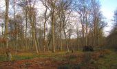Trail Walk SAINT-JEAN-AUX-BOIS - en forêt de Compiègne_11_la landeblin_les Petits Monts - Photo 88