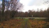 Trail Walk SAINT-JEAN-AUX-BOIS - en forêt de Compiègne_11_la landeblin_les Petits Monts - Photo 49