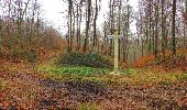 Trail Walk SAINT-JEAN-AUX-BOIS - en forêt de Compiègne_11_la landeblin_les Petits Monts - Photo 55