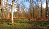 Trail Walk SAINT-JEAN-AUX-BOIS - en forêt de Compiègne_11_la landeblin_les Petits Monts - Photo 86