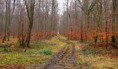 Trail Walk SAINT-JEAN-AUX-BOIS - en forêt de Compiègne_11_la landeblin_les Petits Monts - Photo 43