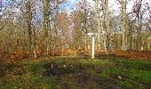 Trail Walk SAINT-JEAN-AUX-BOIS - en forêt de Compiègne_11_la landeblin_les Petits Monts - Photo 87