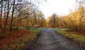 Trail Walk SAINT-JEAN-AUX-BOIS - en forêt de Compiègne_11_la landeblin_les Petits Monts - Photo 7
