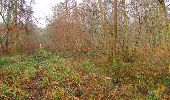 Trail Walk SAINT-JEAN-AUX-BOIS - en forêt de Compiègne_11_la landeblin_les Petits Monts - Photo 23