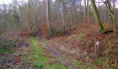 Trail Walk SAINT-JEAN-AUX-BOIS - en forêt de Compiègne_11_la landeblin_les Petits Monts - Photo 75