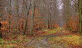 Trail Walk SAINT-JEAN-AUX-BOIS - en forêt de Compiègne_11_la landeblin_les Petits Monts - Photo 42