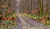 Trail Walk SAINT-JEAN-AUX-BOIS - en forêt de Compiègne_11_la landeblin_les Petits Monts - Photo 31