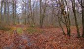 Trail Walk SAINT-JEAN-AUX-BOIS - en forêt de Compiègne_11_la landeblin_les Petits Monts - Photo 58