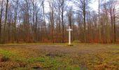 Randonnée Marche SAINT-JEAN-AUX-BOIS - en forêt de Compiègne_11_la landeblin_les Petits Monts - Photo 63