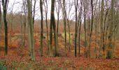 Randonnée Marche SAINT-JEAN-AUX-BOIS - en forêt de Compiègne_11_la landeblin_les Petits Monts - Photo 53