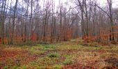 Trail Walk SAINT-JEAN-AUX-BOIS - en forêt de Compiègne_11_la landeblin_les Petits Monts - Photo 41