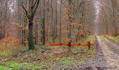 Trail Walk SAINT-JEAN-AUX-BOIS - en forêt de Compiègne_11_la landeblin_les Petits Monts - Photo 30