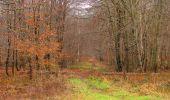 Trail Walk SAINT-JEAN-AUX-BOIS - en forêt de Compiègne_11_la landeblin_les Petits Monts - Photo 48