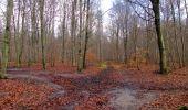 Trail Walk SAINT-JEAN-AUX-BOIS - en forêt de Compiègne_11_la landeblin_les Petits Monts - Photo 65