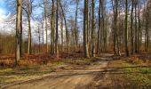 Trail Walk SAINT-JEAN-AUX-BOIS - en forêt de Compiègne_11_la landeblin_les Petits Monts - Photo 78
