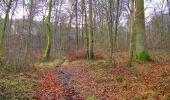 Trail Walk SAINT-JEAN-AUX-BOIS - en forêt de Compiègne_11_la landeblin_les Petits Monts - Photo 71