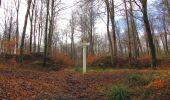 Trail Walk SAINT-JEAN-AUX-BOIS - en forêt de Compiègne_11_la landeblin_les Petits Monts - Photo 67
