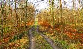 Trail Walk SAINT-JEAN-AUX-BOIS - en forêt de Compiègne_11_la landeblin_les Petits Monts - Photo 12