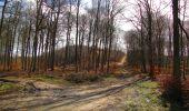 Trail Walk SAINT-JEAN-AUX-BOIS - en forêt de Compiègne_11_la landeblin_les Petits Monts - Photo 81