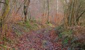 Trail Walk SAINT-JEAN-AUX-BOIS - en forêt de Compiègne_11_la landeblin_les Petits Monts - Photo 76