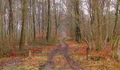 Randonnée Marche SAINT-JEAN-AUX-BOIS - en forêt de Compiègne_11_la landeblin_les Petits Monts - Photo 34