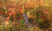 Trail Walk SAINT-JEAN-AUX-BOIS - en forêt de Compiègne_11_la landeblin_les Petits Monts - Photo 11