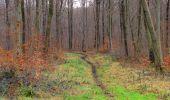 Randonnée Marche SAINT-JEAN-AUX-BOIS - en forêt de Compiègne_11_la landeblin_les Petits Monts - Photo 59