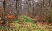 Trail Walk SAINT-JEAN-AUX-BOIS - en forêt de Compiègne_11_la landeblin_les Petits Monts - Photo 61
