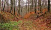 Trail Walk SAINT-JEAN-AUX-BOIS - en forêt de Compiègne_11_la landeblin_les Petits Monts - Photo 56