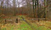Trail Walk SAINT-JEAN-AUX-BOIS - en forêt de Compiègne_11_la landeblin_les Petits Monts - Photo 46