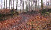 Randonnée Marche SAINT-JEAN-AUX-BOIS - en forêt de Compiègne_11_la landeblin_les Petits Monts - Photo 68