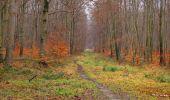 Trail Walk SAINT-JEAN-AUX-BOIS - en forêt de Compiègne_11_la landeblin_les Petits Monts - Photo 44