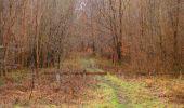 Trail Walk SAINT-JEAN-AUX-BOIS - en forêt de Compiègne_11_la landeblin_les Petits Monts - Photo 47