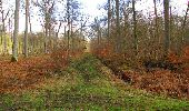Trail Walk SAINT-JEAN-AUX-BOIS - en forêt de Compiègne_11_la landeblin_les Petits Monts - Photo 85