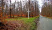 Trail Walk SAINT-JEAN-AUX-BOIS - en forêt de Compiègne_11_la landeblin_les Petits Monts - Photo 38