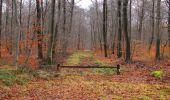 Trail Walk SAINT-JEAN-AUX-BOIS - en forêt de Compiègne_11_la landeblin_les Petits Monts - Photo 37