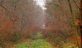 Trail Walk SAINT-JEAN-AUX-BOIS - en forêt de Compiègne_11_la landeblin_les Petits Monts - Photo 26